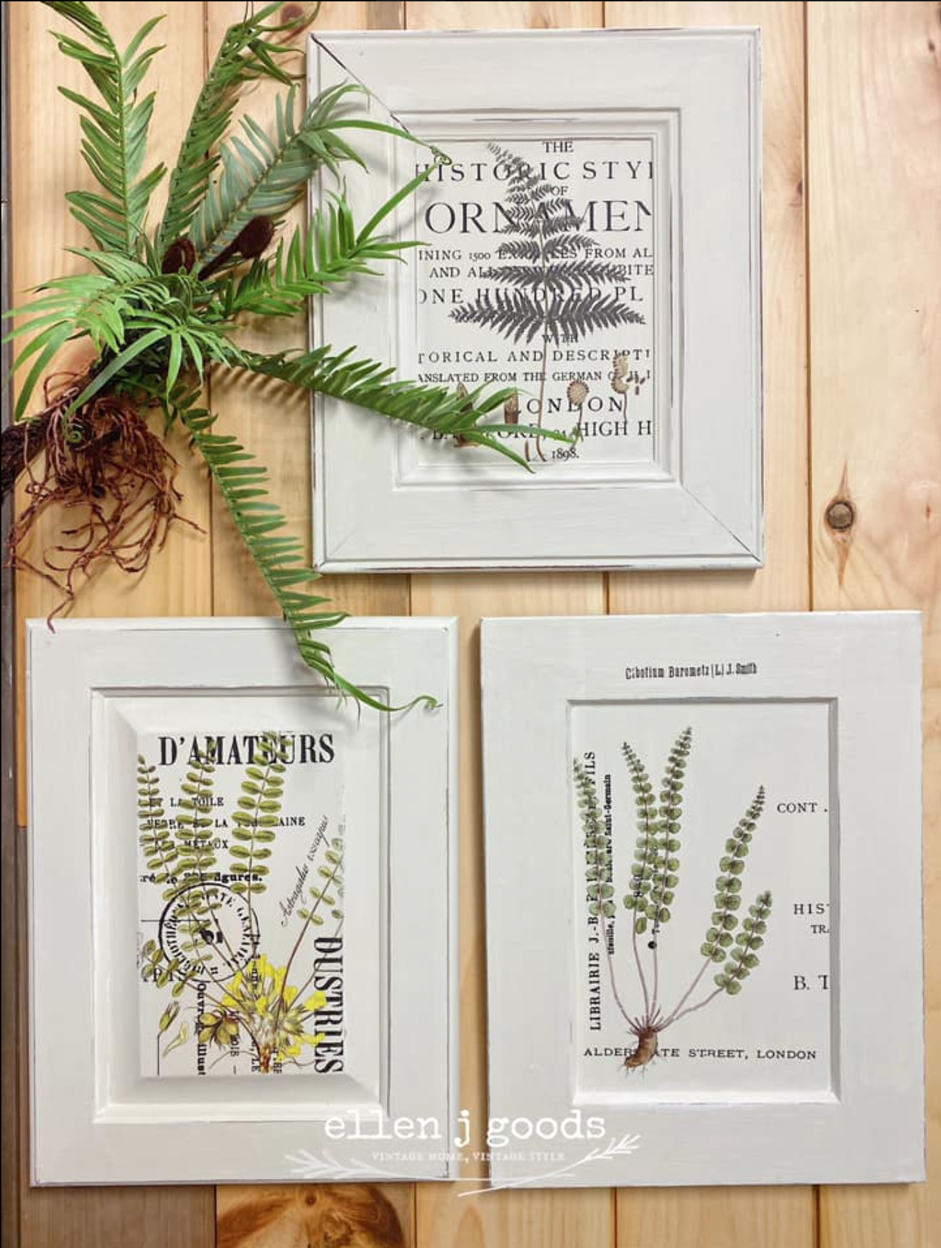DIY wall art with rub on ferns and plant images